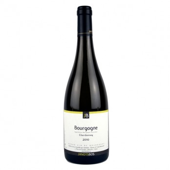 2010 Bourgogne Blanc 0,75 l - weiss - Domaine JanotsBos