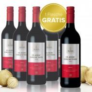 2011 Classic Collection Shiraz vom Weingut Asara im 6er Paket 5 Flaschen + 1 Flasche gratis